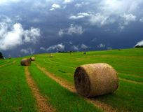 Bale of hay Royalty Free Stock Image