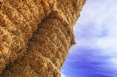 Bale of Hay Straw,Blue Sky Royalty Free Stock Images