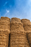 Bale of Hay Straw,Blue Sky Stock Images