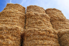 Bale of Hay Straw,Blue Sky Royalty Free Stock Image