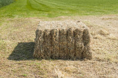 Bale of hay on a sunny day Royalty Free Stock Image