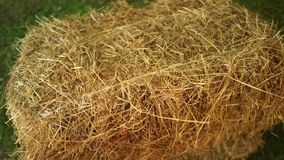 Bale of hay tied with string. stock video footage