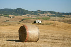 A bale of hay in the Tuscan countryside. A large freshly baled round hay bale in a farm field in the Tuscan countryside Stock Image