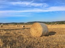 Bale of hay in tuscany royalty free stock photography