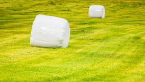 Bale of hay wrapped in plastic foil, Norway Royalty Free Stock Photos