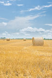 Bale of hay on a yellow harvesting field Royalty Free Stock Image