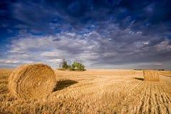 Bale in landscape Stock Photo