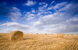 Bale in landscape Royalty Free Stock Photography