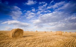 Bale in landscape Stock Photos