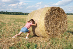 Free Bale Of Hay Royalty Free Stock Image - 22669096