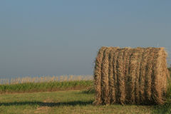 Bale Of Hay With Blue Sky Royalty Free Stock Photography