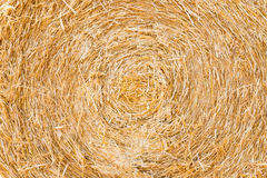Bale pressed with straw stock photography