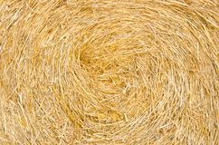 Bale roll straw texture Stock Photo