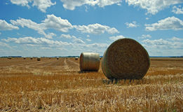Bale of straw. On a field in July royalty free stock photos