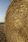 Bale of straw Stock Photography