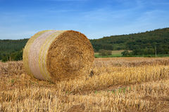 Bale of straw. A bale of straw on a sunny day before blue sky Royalty Free Stock Image