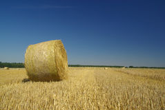 Bale of straw 17 Royalty Free Stock Photography