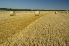 Bale of straw 18 Royalty Free Stock Photo