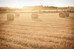 Bale of straw Royalty Free Stock Photos