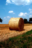 Bale of straw. Digital photo of a bale of straw on a field Stock Photo