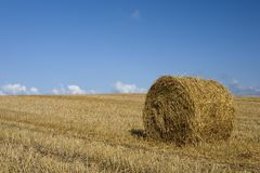 Bale of straw. Harvest scene - bale of straw Stock Photo