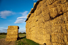 Bale of straw in automn Royalty Free Stock Photo
