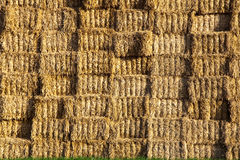 Bale of straw in automn in intensive colors Royalty Free Stock Photo