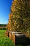 Bale straw autumn Royalty Free Stock Photo