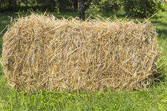 The bale of straw Stock Image