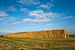 Bale of straw with blue sky Royalty Free Stock Images