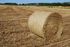 Bale of straw in a farm field Royalty Free Stock Photos