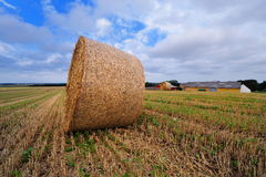 Bale of straw on farmland Royalty Free Stock Photos