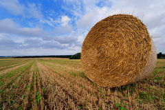 Bale of straw on farmland Royalty Free Stock Photography