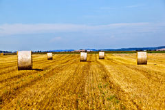 Bale of straw on field Royalty Free Stock Photo