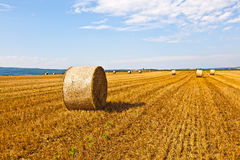 Bale of straw on field Royalty Free Stock Images