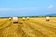 Bale of straw on field Stock Images