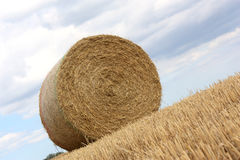 Bale of Straw in Harvest Field. Royalty Free Stock Image