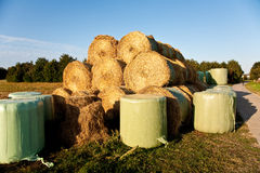 Bale of straw infold in plastic film to keep dry in automn in in Stock Photography
