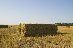Bale of straw is a rectangular shape on the field Royalty Free Stock Photography