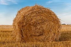 A bale of straw stock images