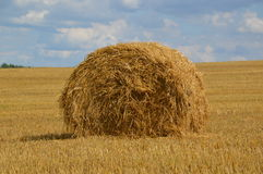 Bale straw Royalty Free Stock Photo