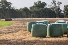 Baleage - Round hay bales wrapped in plastic Stock Photos