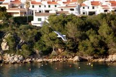 Balearic Island menorca spain Arkivbild