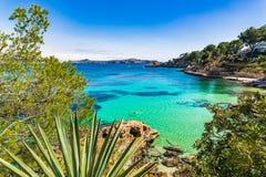 Balearic Islands, beautiful seaside landscape at beach of Cala Fornells. Idyllic bay beach of Cala Fornells, picturesque nature on Mallorca island, Mediterranean Stock Photo