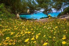 Balearic medelhavs- för Cala Macarella Menorca turkos arkivbilder