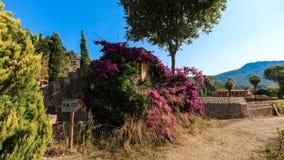 Balearic wysp Śródziemnomorska architektura Mallorca, Finca obrazy stock