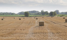 Baled hay in a Rolling Farm Field Royalty Free Stock Photos