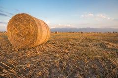 Baled Hay Rolls at Sunset Stock Image