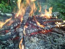 Balefire in the forest Royalty Free Stock Photography
