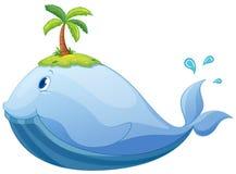 baleia Imagem de Stock Royalty Free